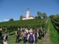 Herbstausflug Bodensee 2015_4