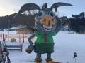 Kinderskitag 2019 image256 (Copy)